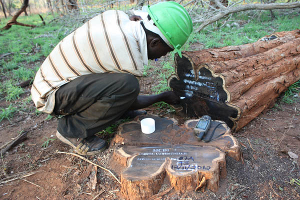 GPS recording of FSC African blackwood